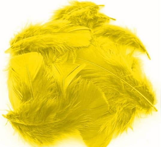 Piórka Dekoracyjne 50g 300 Szt żółtekastom